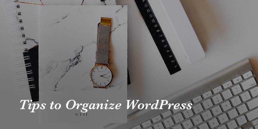 Tips To Better Organize Your WordPress Website