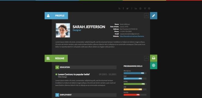 Blog ShiftCV, CV, Thème WordPress Portfolio