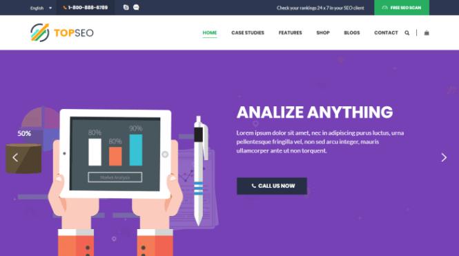TopSEO - Thème WordPress pour le marketing numérique
