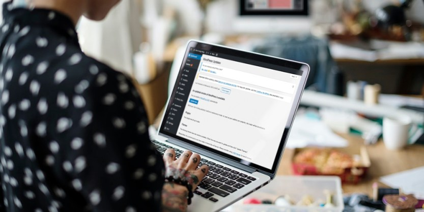 What are WordPress Admin Notices?