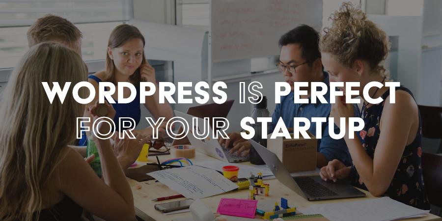 Why WordPress Is Ideal for Startups & Entrepreneurs