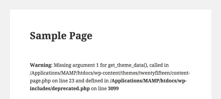 wp-debug-error
