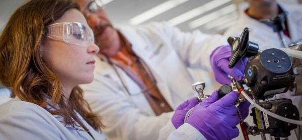 Biomedical Engineering Academics Wpi