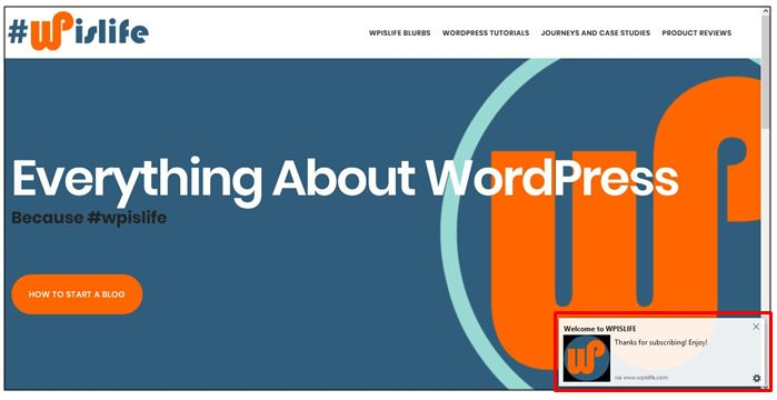 , SendPulse Web Push Notification for WordPress Review