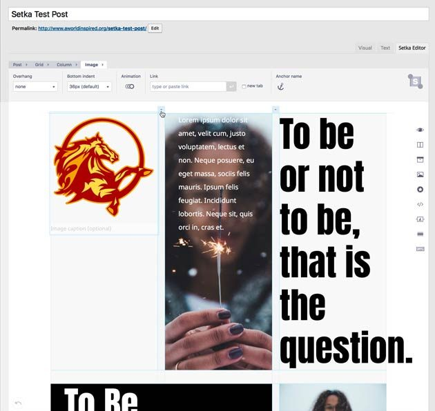Setka Editor content creation