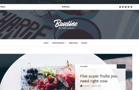 Array Themes Baseline WordPress Theme