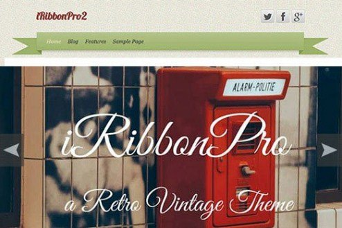 CyberChimps iRibbon Pro 2 WordPress Theme