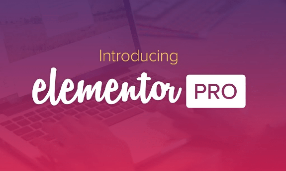 Elementor Pro WordPress Plugin