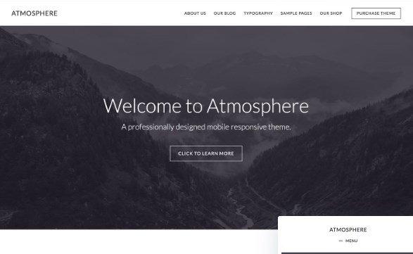 StudioPress Atmosphere Pro Theme