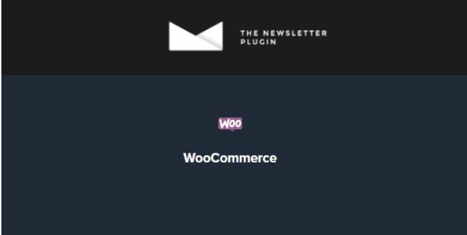 Newsletter WooCommerce