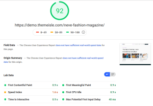 Neva Theme Google PageSpeed Insights Test Desktop