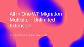 All in One WP Migration Multisite + Unlimited Extension