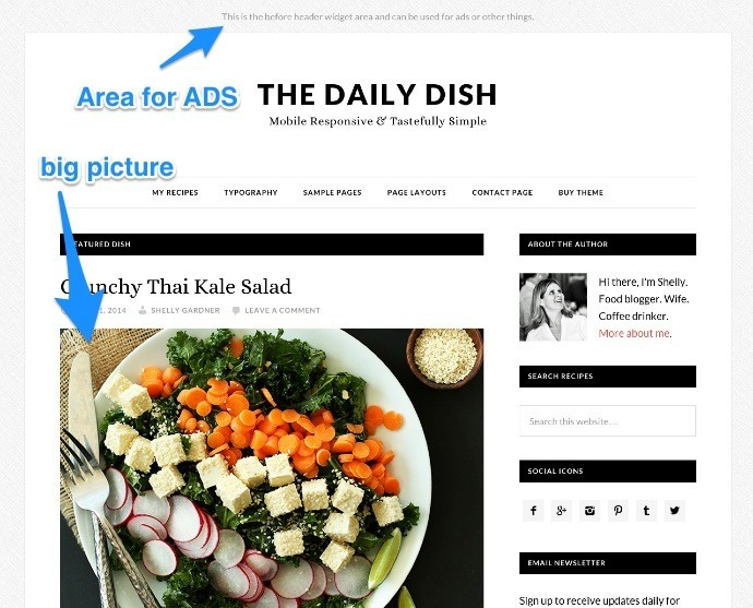 daily-dish-pro-featured