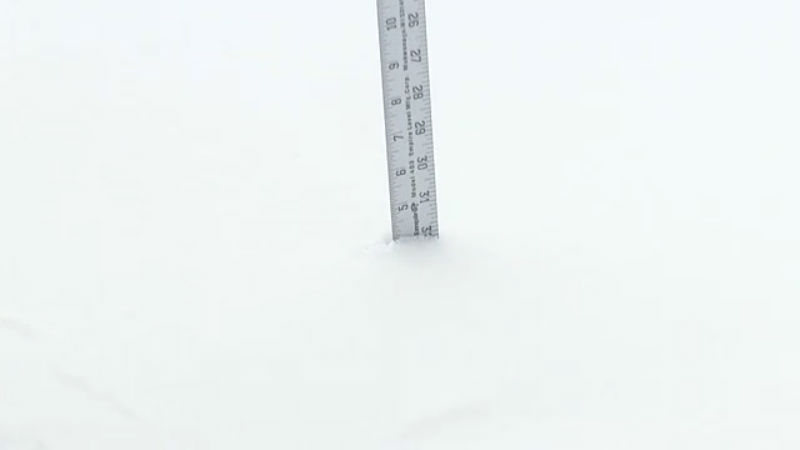 new haven snow_441826