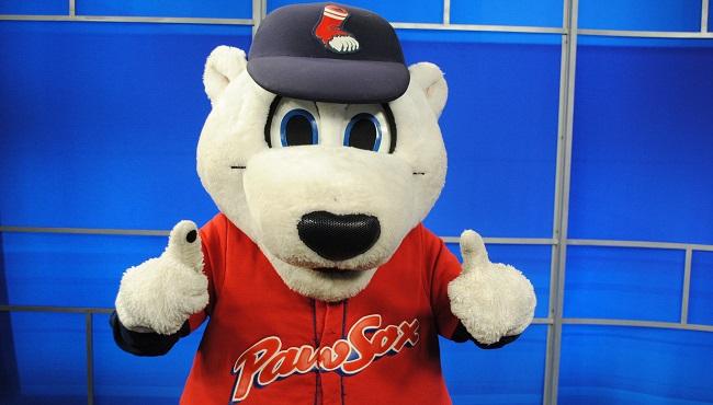 pawsox-paws-650x370_407334