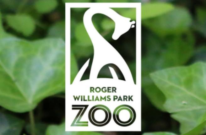 RWP zoo_599429