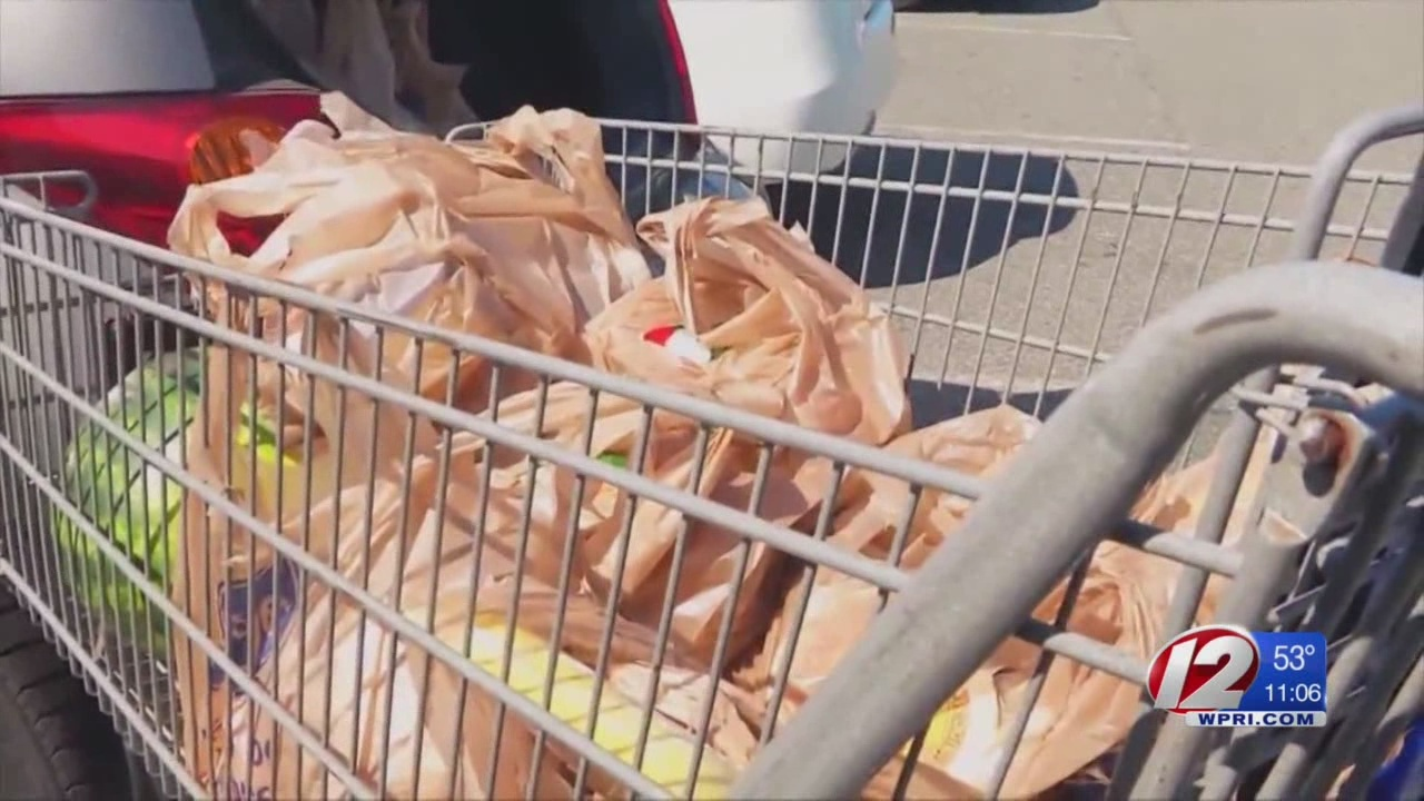 Plastic bag ban heads to Elorza's desk following Earth Day passage