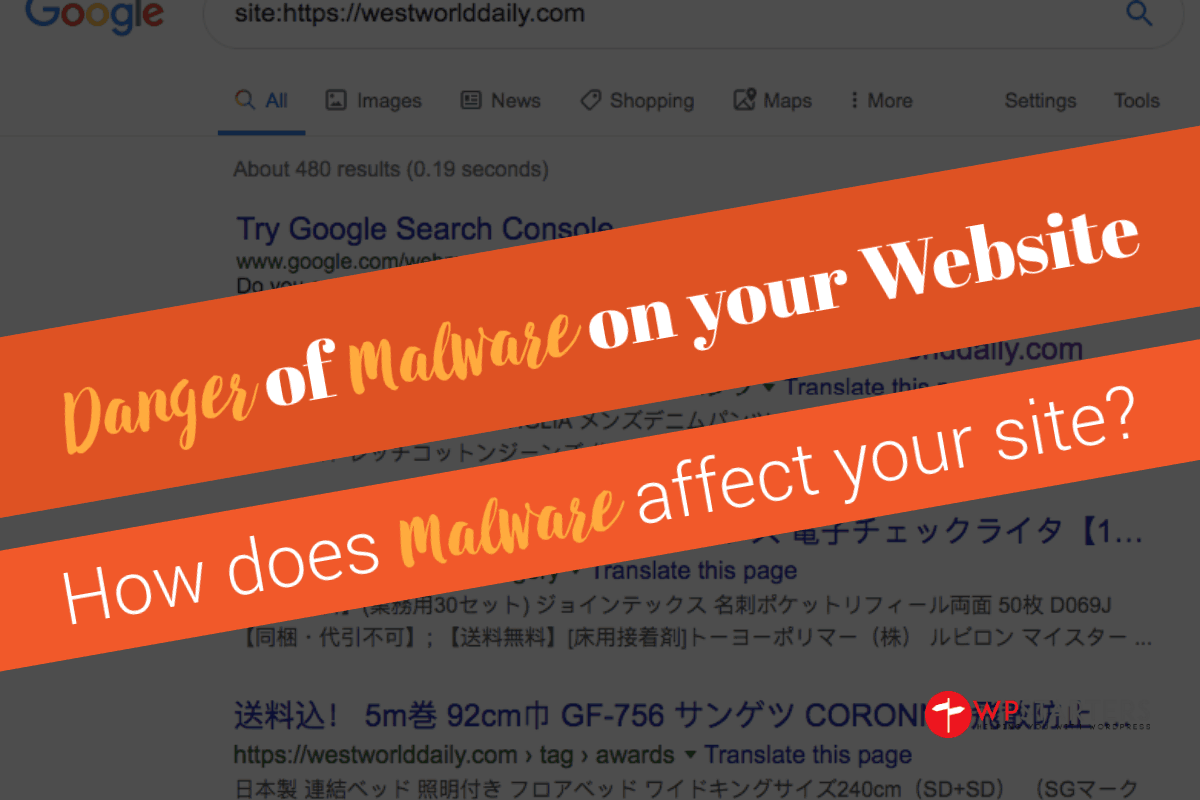 Dangers of Malware on your Website