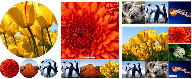 WordPress Image Galleries, using Jetpack Tiled Galleries