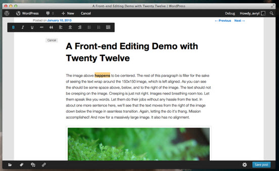 Screenshot From Proposed Front End Editor Project