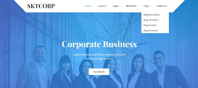 SKT Corp Pro