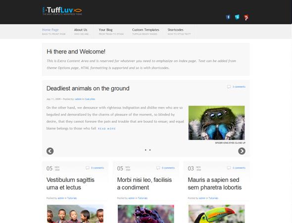 Sofa TuffLuv - WP Premium Theme