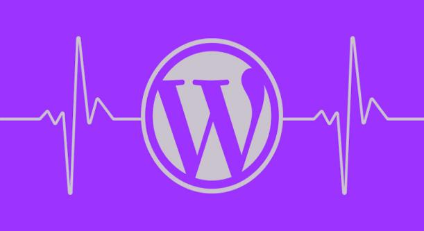 L'équipe des extensions trace une ligne: Les extensions ne doivent pas modifier les réglages de mise à jour automatique par défaut de WordPress