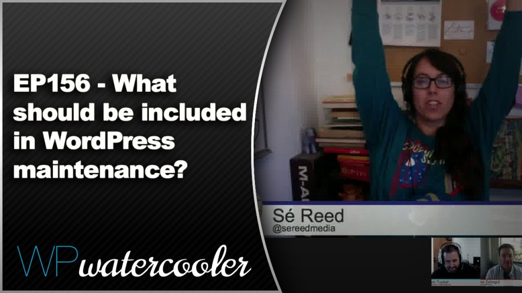 Ep156 - what should be included in wordpress maintenance? 9