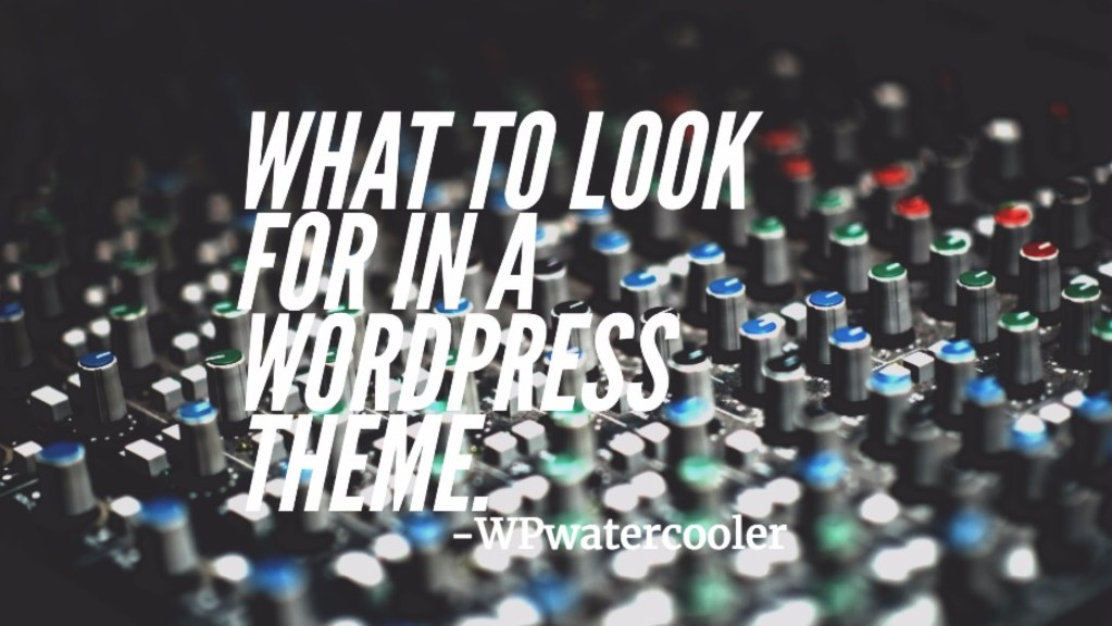 Ep244 - what to look for in a wordpress theme - wpwatercooler 1