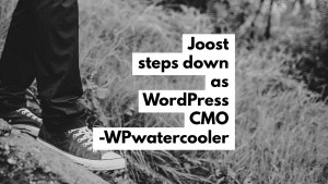EP325 - Joost steps down as WordPress CMO 3