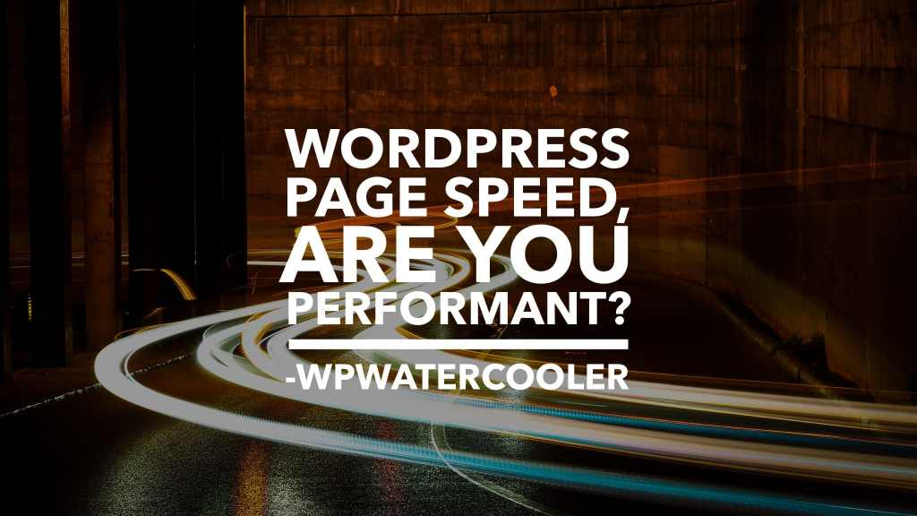 EP338 WordPress Page Speed are you performant
