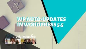 WP Auto updates in WordPress 5 5 yt