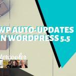 Wp auto updates in wordpress 5 5 yt