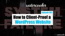 EP361 How to Client Proof a WordPress Website yt