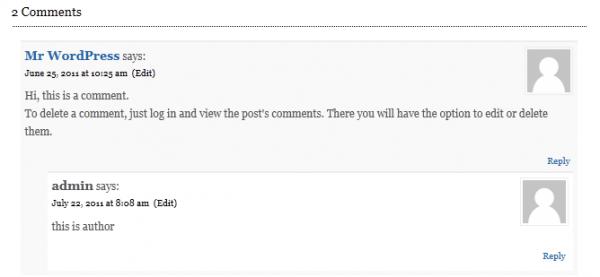 default author comments