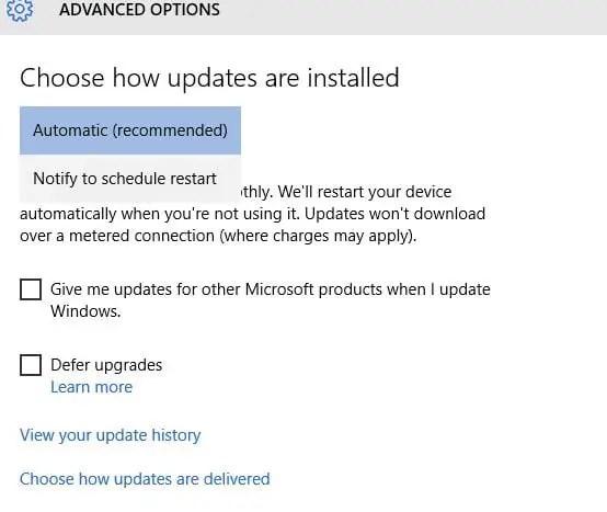 Windows Update Advance Option