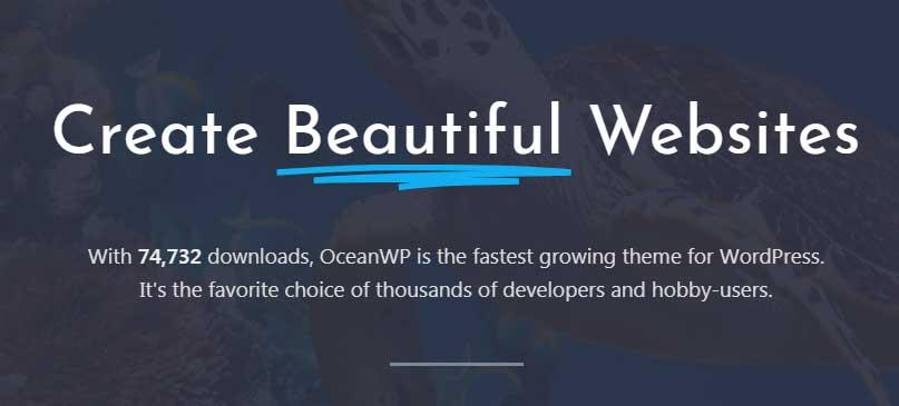 Ocean wp theme