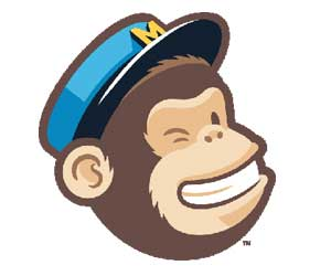 mailchimp email subscribers