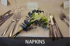 napkins_box_text