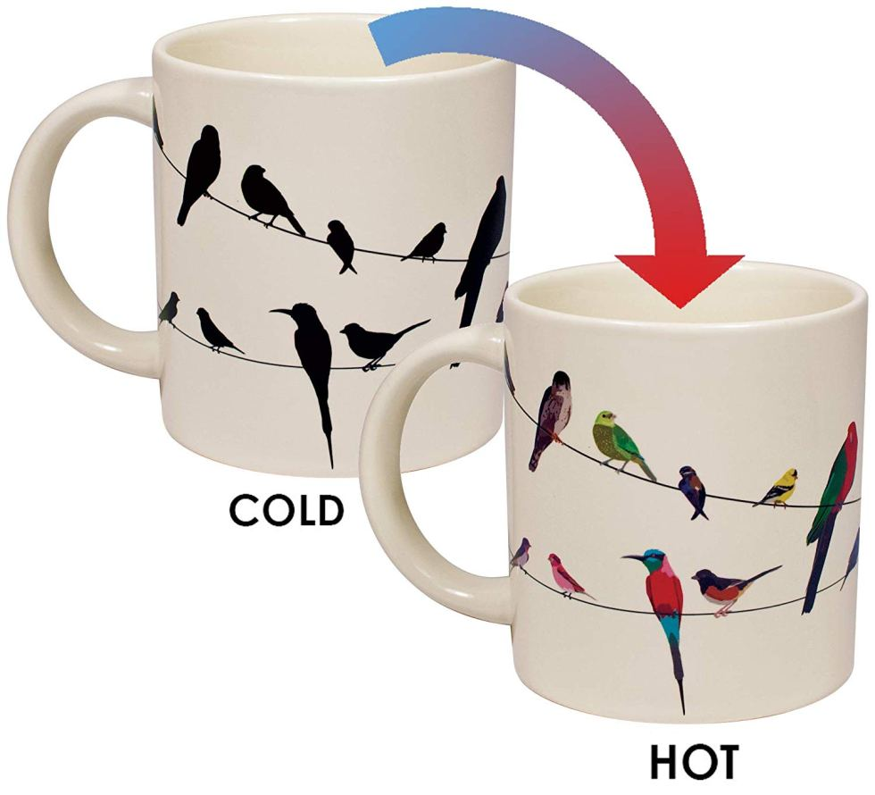 Hot Cold Mug for bird lover gifts