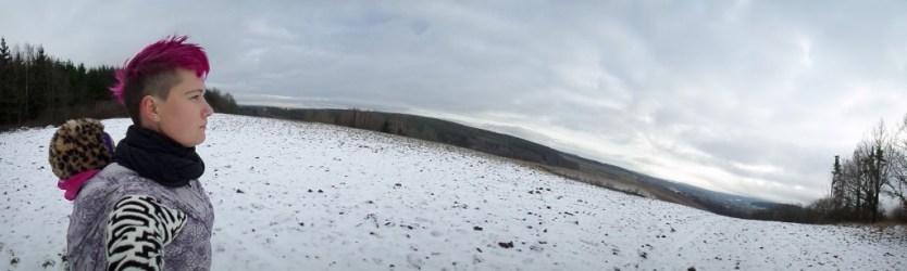 Wisteria panorama