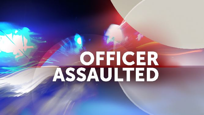 officer assaulted_103087