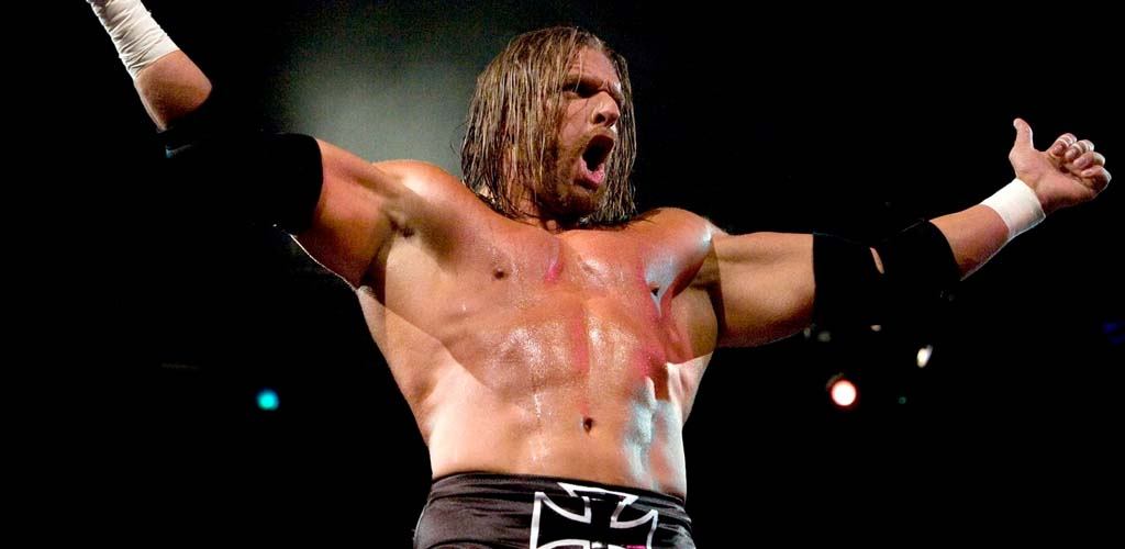 Image result for triple h long hair