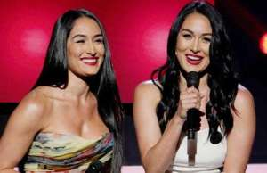 Nikki and Brie Bella Announce They re Both Pregnant