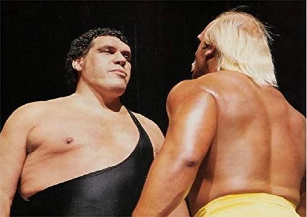 Andre The Giant Vs Hulk Hogan