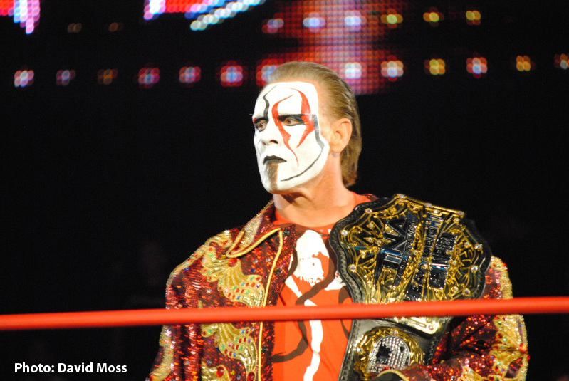 Sting looks