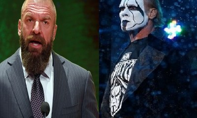 WWE legends Triple H and Sting