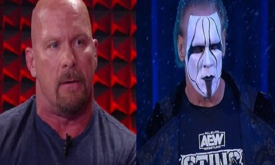 Stone Cold and Sting