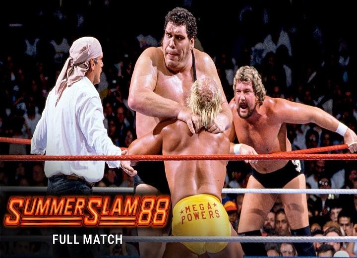 Hulk Hogan Andre the Giant match