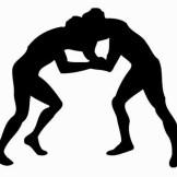 Wrestling Pattern 10